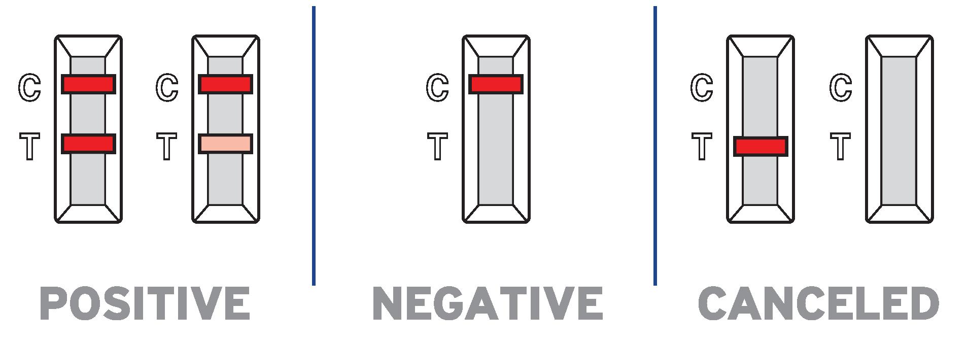 SieloCovidAg® antigen rapid test results